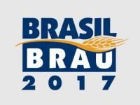 Release - Brasil Brau e Degusta Beer & Food 2017