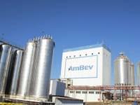 Cervejaria Ambev lança aceleradora para soluções ambientais