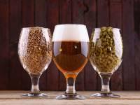 My Growler explica o porquê deve-se optar por cerveja artesanal